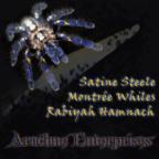 arachneenterprises's Avatar